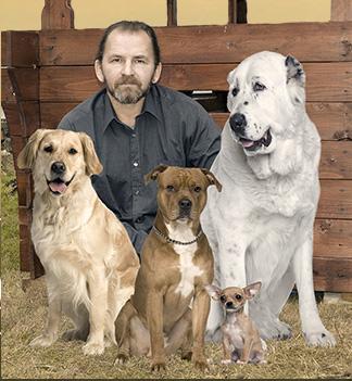 Дрессировка собак. Кинолог Юрий Суханов