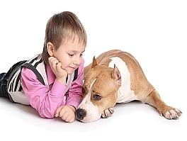 Собака-телохранитель с ребенком